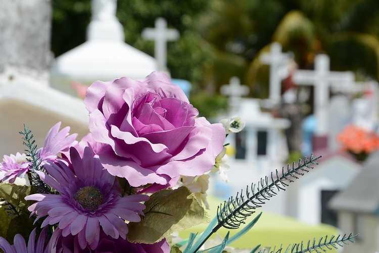 Contrat de fleurissement sépultures - cimetière de l''Ouest St-Brieuc 0